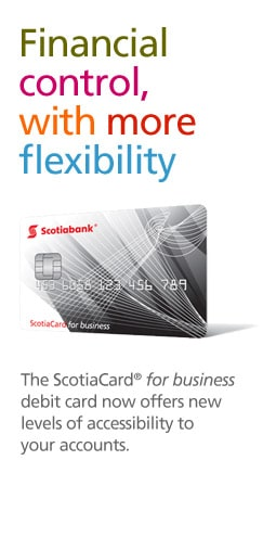 Scotiabank business plan guide