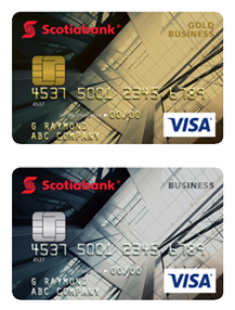 Visa Business Card Program mercial Financing