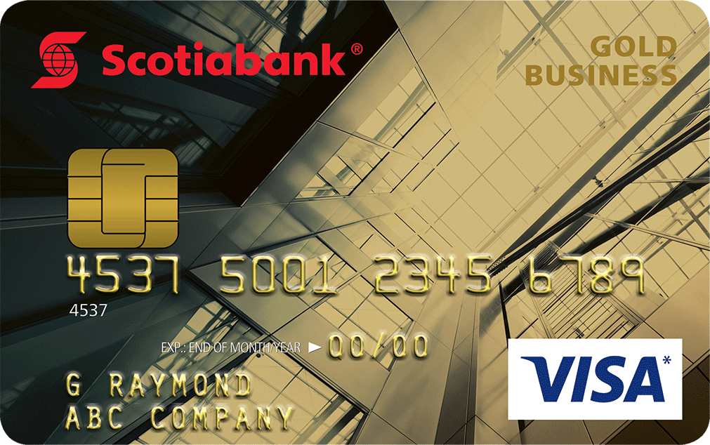 Visa business credit card reheart Gallery